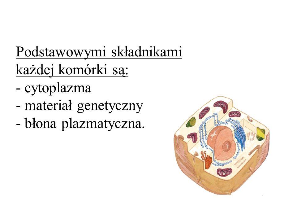 Podstawowymi składnikami każdej komórki są: - cytoplazma - materiał genetyczny - błona plazmatyczna.