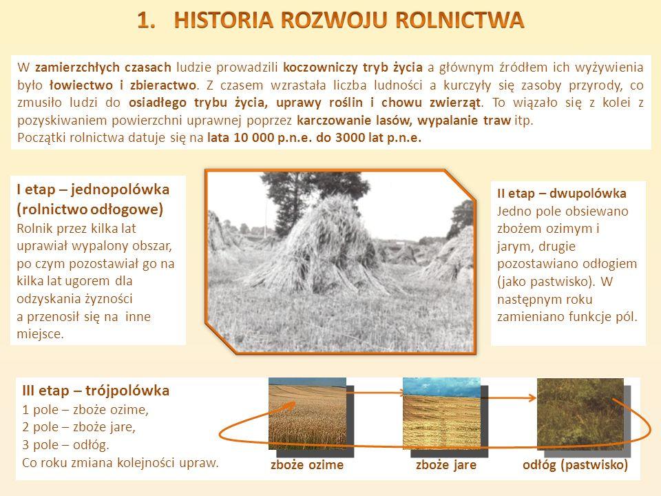 I etap – jednopolówka (rolnictwo odłogowe) III etap – trójpolówka