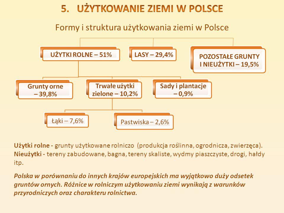Formy i struktura użytkowania ziemi w Polsce