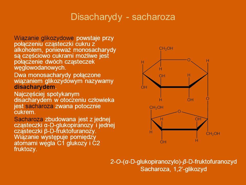 Disacharydy - sacharoza