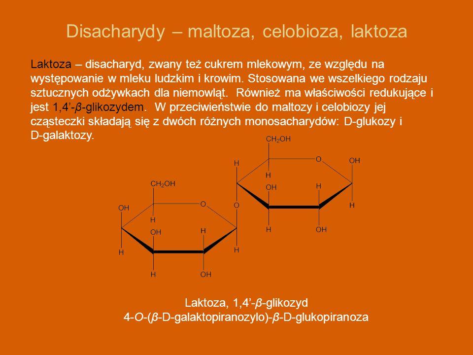 Disacharydy – maltoza, celobioza, laktoza