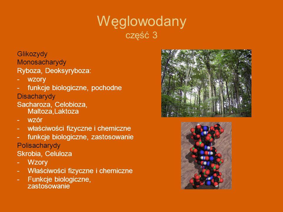 Węglowodany część 3 Glikozydy Monosacharydy Ryboza, Deoksyryboza: