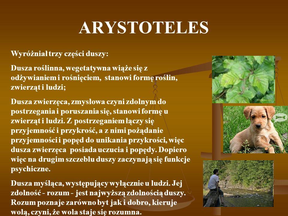 ARYSTOTELES Wyróżniał trzy części duszy: