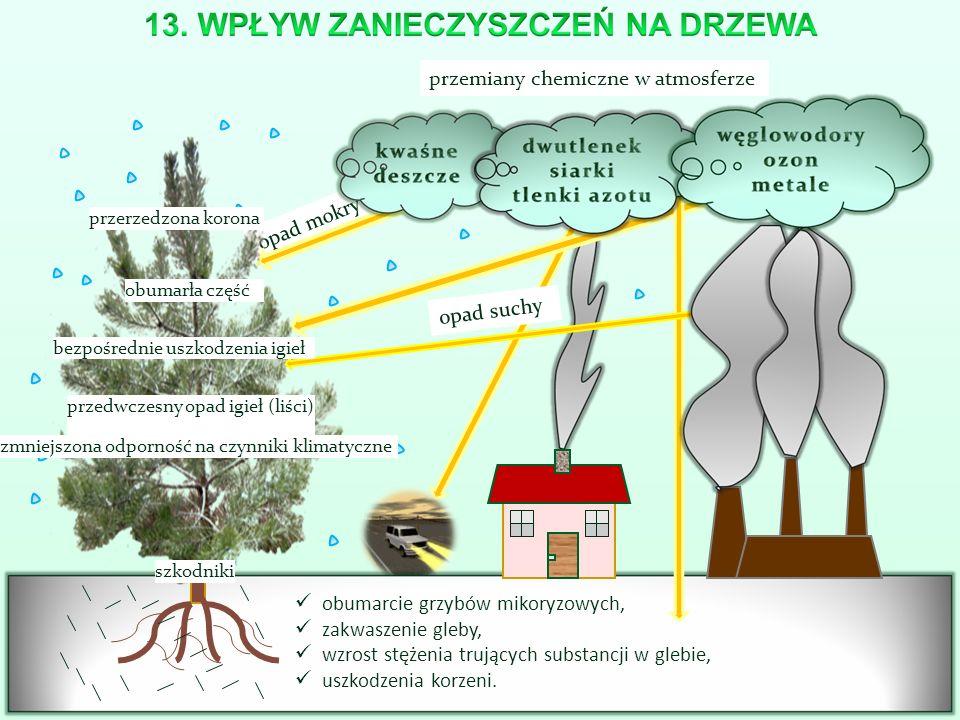przemiany chemiczne w atmosferze