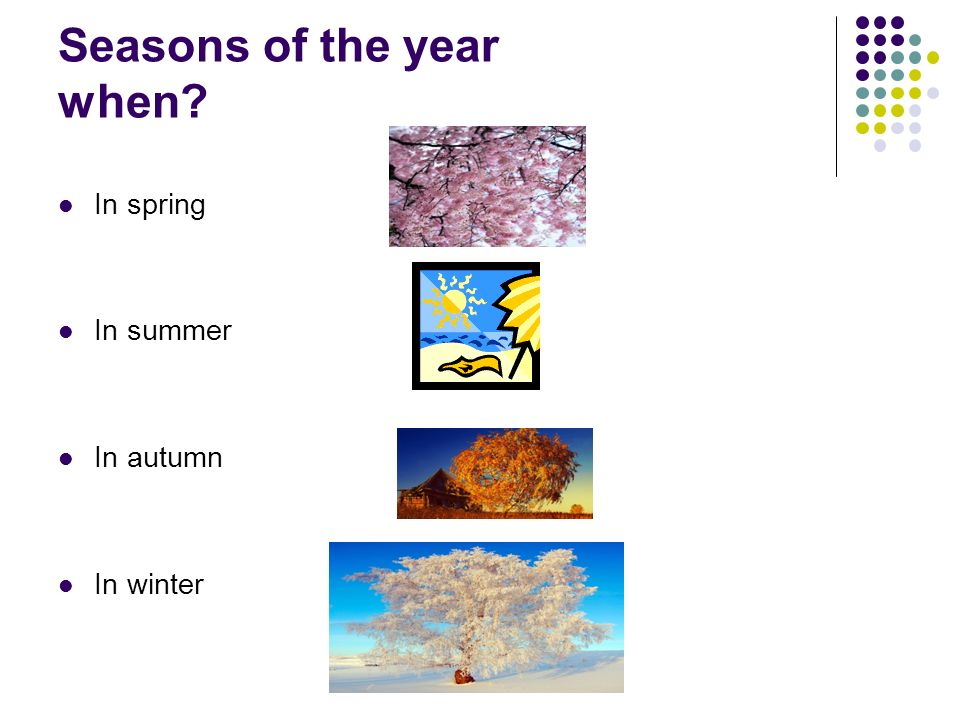 Seasons of the year when