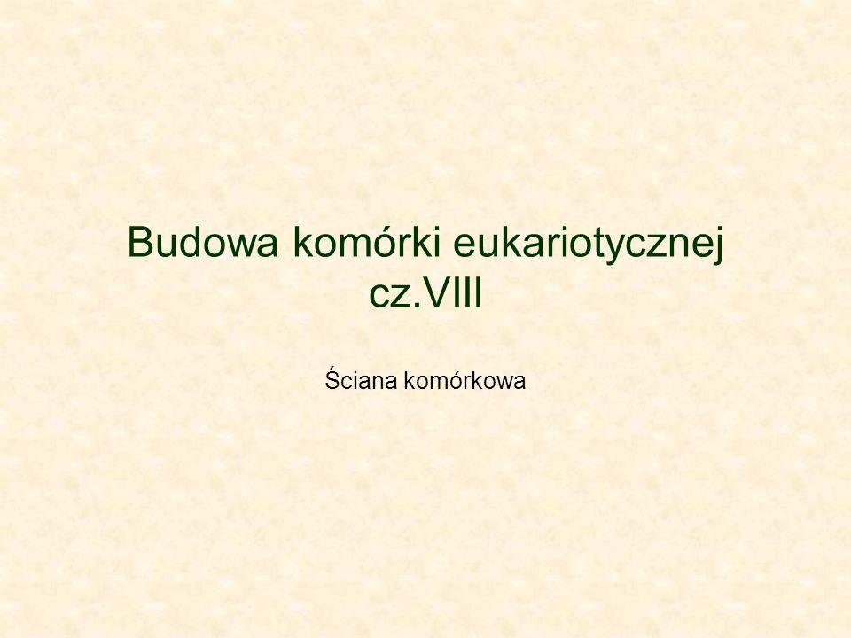 Budowa komórki eukariotycznej cz.VIII