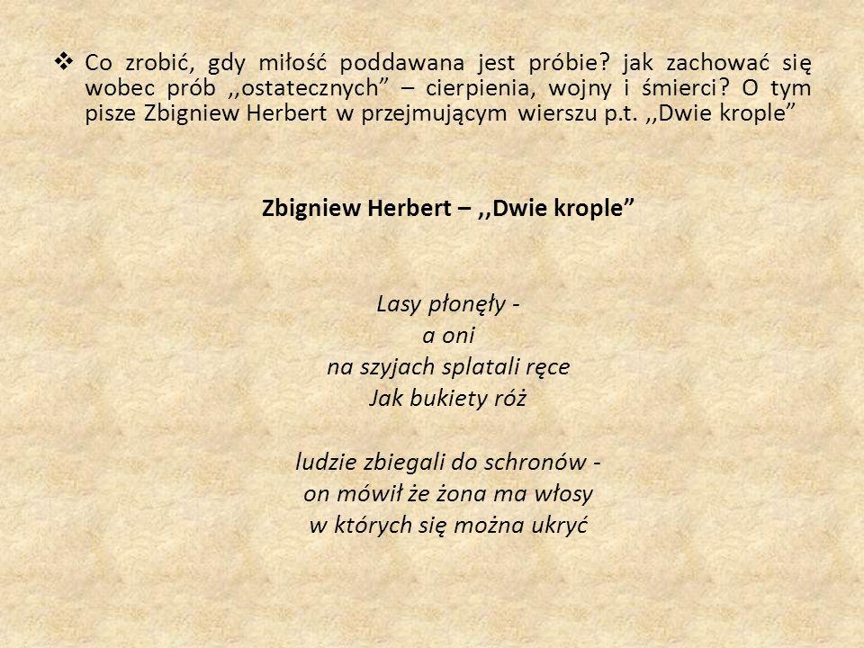 Zbigniew Herbert – ,,Dwie krople