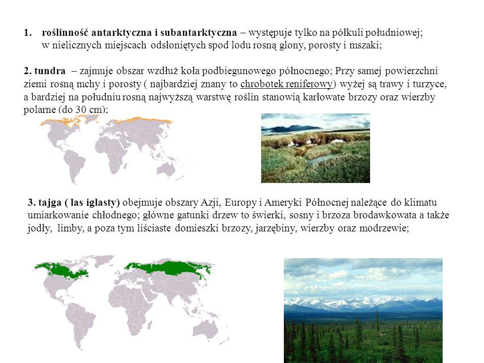 roślinność antarktyczna i subantarktyczna – występuje tylko na półkuli południowej; w nielicznych miejscach odsłoniętych spod lodu rosną glony, porosty i mszaki;
