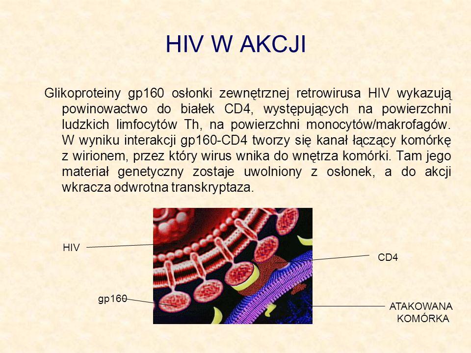 HIV W AKCJI