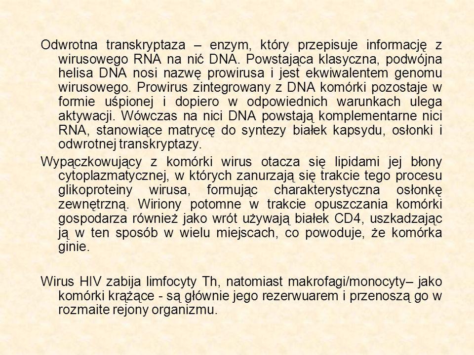 Odwrotna transkryptaza – enzym, który przepisuje informację z wirusowego RNA na nić DNA. Powstająca klasyczna, podwójna helisa DNA nosi nazwę prowirusa i jest ekwiwalentem genomu wirusowego. Prowirus zintegrowany z DNA komórki pozostaje w formie uśpionej i dopiero w odpowiednich warunkach ulega aktywacji. Wówczas na nici DNA powstają komplementarne nici RNA, stanowiące matrycę do syntezy białek kapsydu, osłonki i odwrotnej transkryptazy.