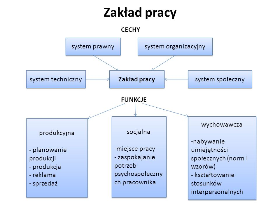 Zakład pracy Zakład pracy system techniczny system prawny produkcyjna
