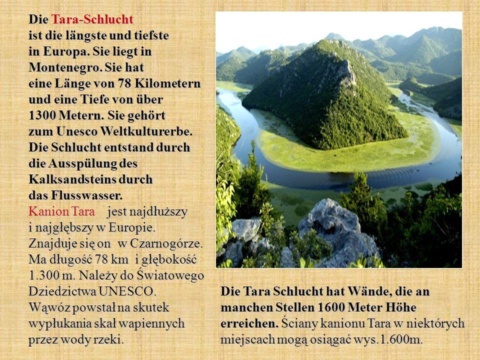 Die Tara-Schlucht ist die längste und tiefste in Europa