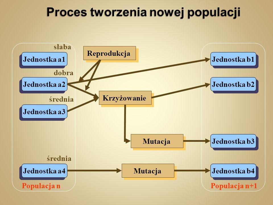 Proces tworzenia nowej populacji