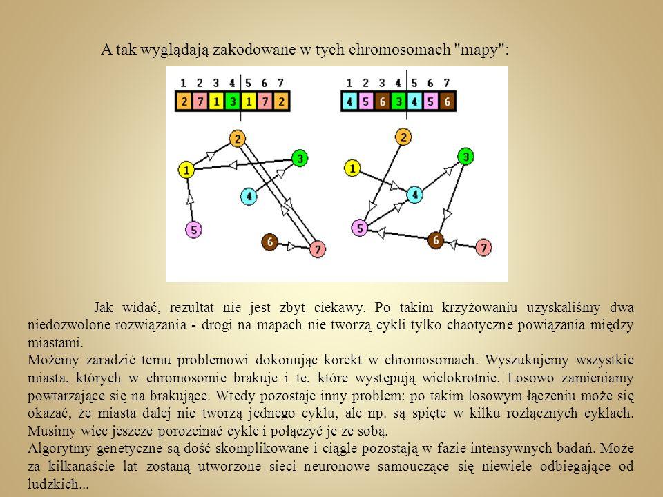 A tak wyglądają zakodowane w tych chromosomach mapy :