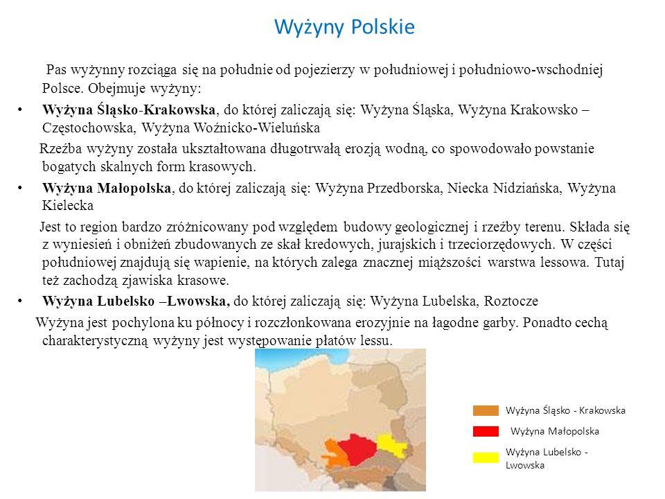 Wyżyny PolskiePas wyżynny rozciąga się na południe od pojezierzy w południowej i południowo-wschodniej Polsce. Obejmuje wyżyny: