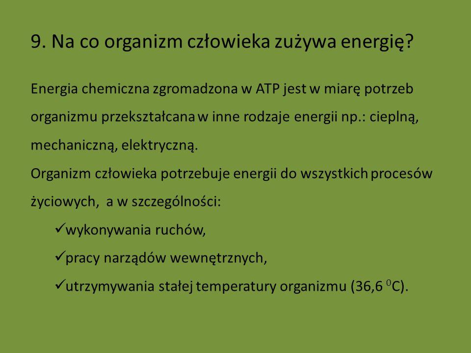 9. Na co organizm człowieka zużywa energię
