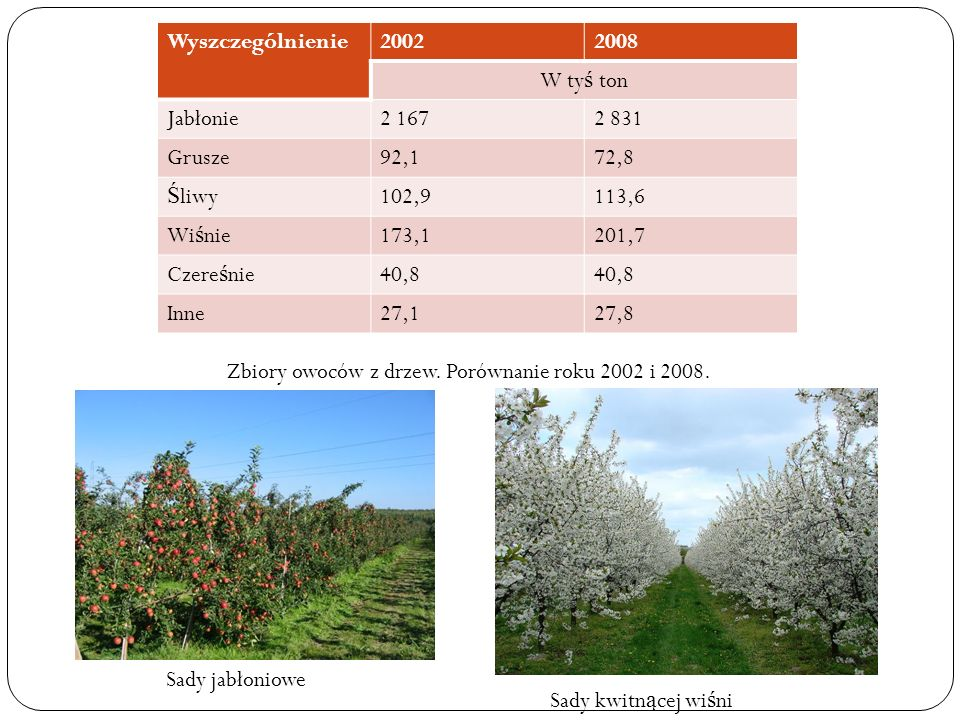 Wyszczególnienie 2002. 2008. W tyś ton. Jabłonie. 2 167. 2 831. Grusze. 92,1. 72,8. Śliwy.