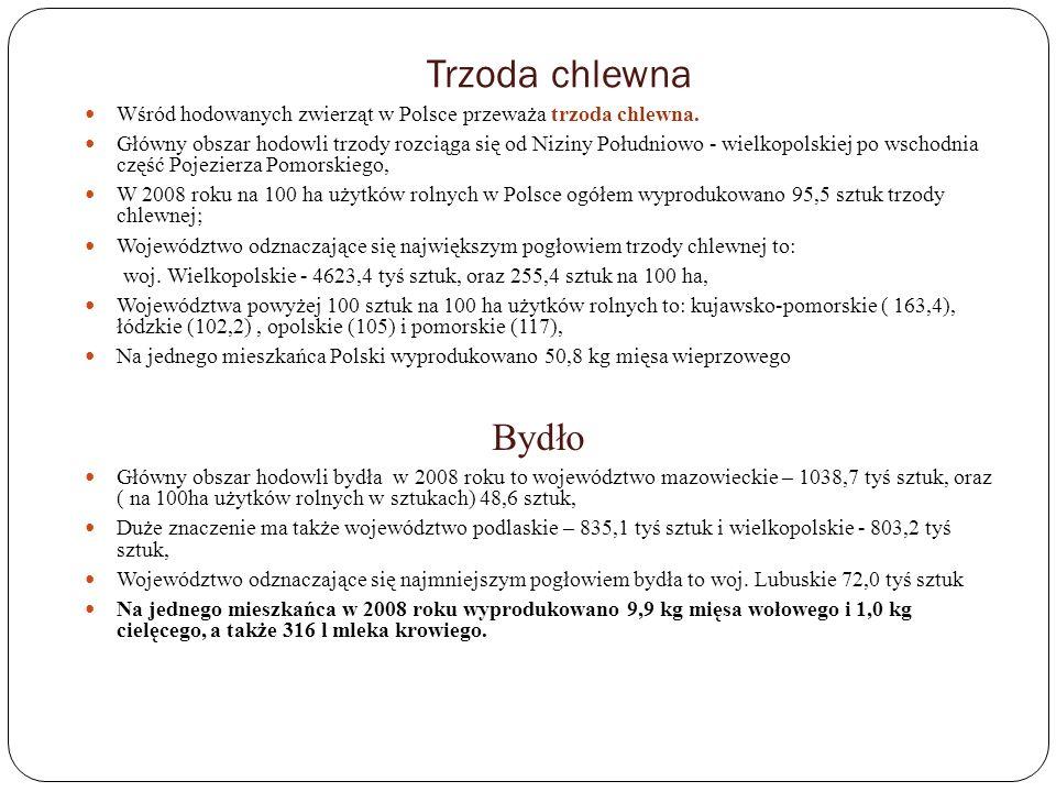 Trzoda chlewna Wśród hodowanych zwierząt w Polsce przeważa trzoda chlewna.