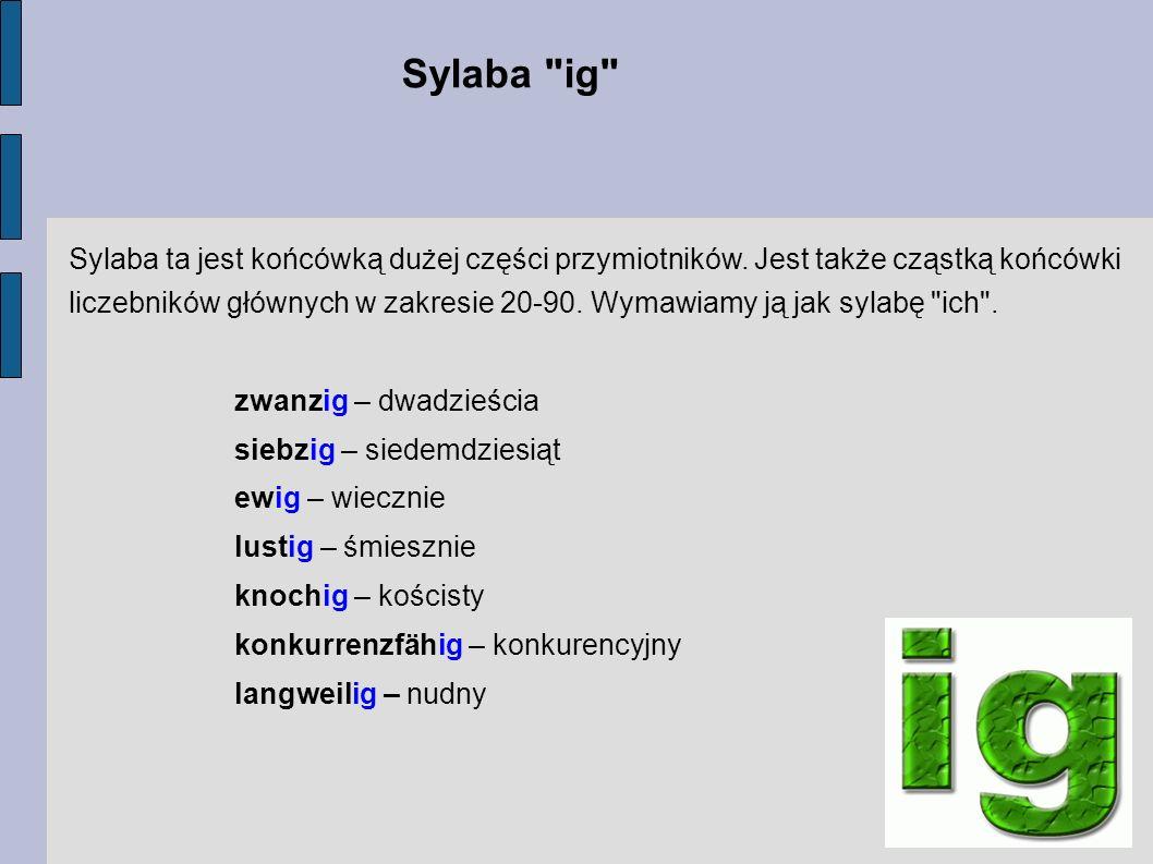 Sylaba ig Sylaba ta jest końcówką dużej części przymiotników. Jest także cząstką końcówki.