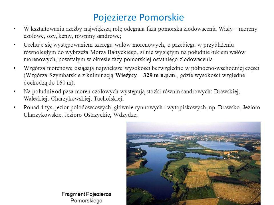 Fragment Pojezierza Pomorskiego