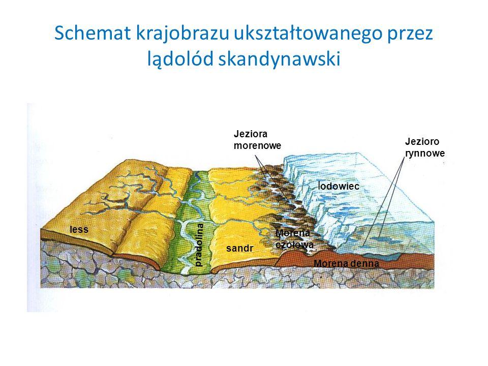 Schemat krajobrazu ukształtowanego przez lądolód skandynawski