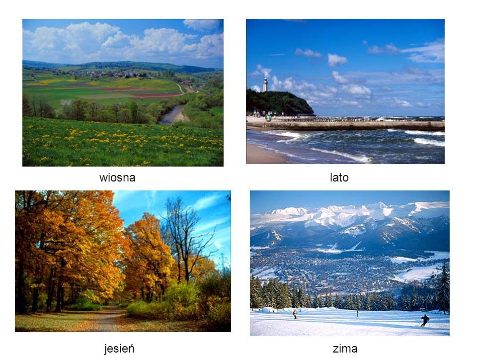 wiosna lato jesień zima