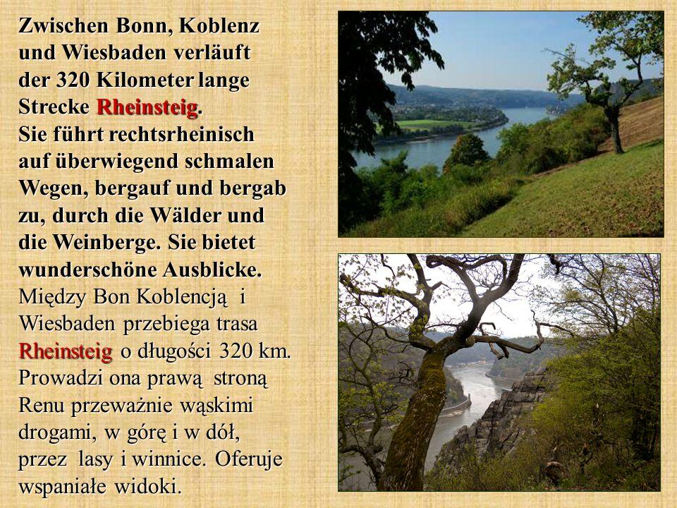 Zwischen Bonn, Koblenz und Wiesbaden verläuft der 320 Kilometer lange Strecke Rheinsteig.