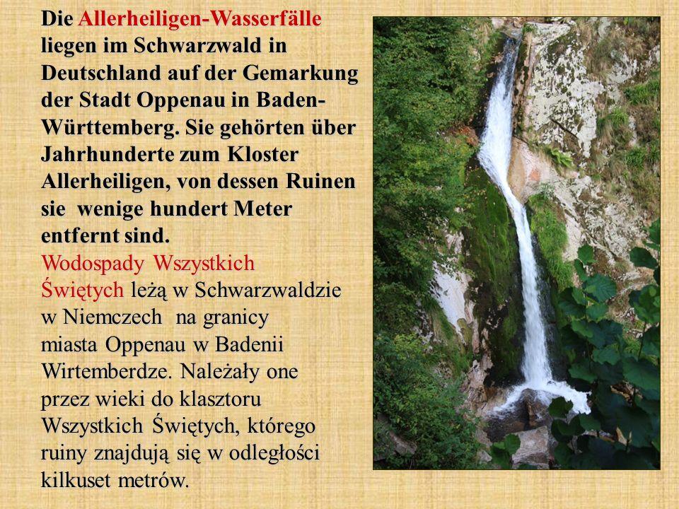 Die Allerheiligen-Wasserfälle liegen im Schwarzwald in Deutschland auf der Gemarkung der Stadt Oppenau in Baden- Württemberg.