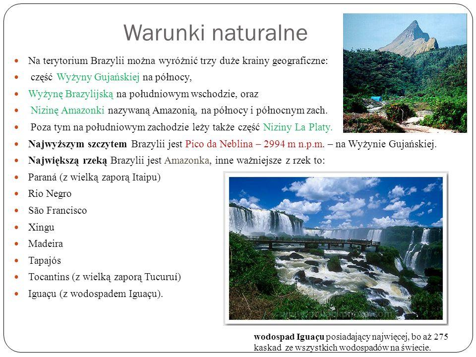 Warunki naturalne Na terytorium Brazylii można wyróżnić trzy duże krainy geograficzne: część Wyżyny Gujańskiej na północy,