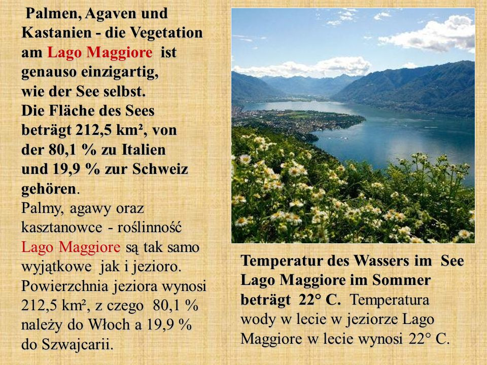 Palmen, Agaven und Kastanien - die Vegetation am Lago Maggiore ist genauso einzigartig, wie der See selbst. Die Fläche des Sees beträgt 212,5 km², von der 80,1 % zu Italien und 19,9 % zur Schweiz gehören. Palmy, agawy oraz kasztanowce - roślinność Lago Maggiore są tak samo wyjątkowe jak i jezioro. Powierzchnia jeziora wynosi 212,5 km², z czego 80,1 % należy do Włoch a 19,9 % do Szwajcarii.