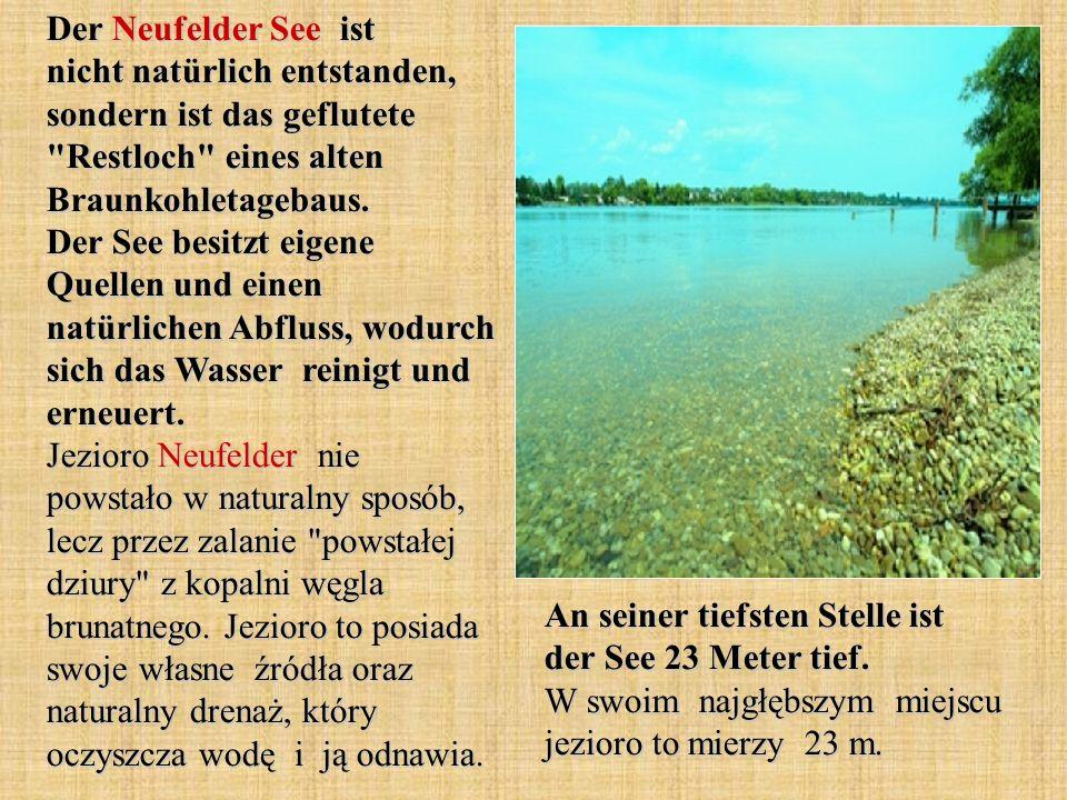 Der Neufelder See ist nicht natürlich entstanden, sondern ist das geflutete Restloch eines alten Braunkohletagebaus. Der See besitzt eigene Quellen und einen natürlichen Abfluss, wodurch sich das Wasser reinigt und erneuert. Jezioro Neufelder nie powstało w naturalny sposób, lecz przez zalanie powstałej dziury z kopalni węgla brunatnego. Jezioro to posiada swoje własne źródła oraz naturalny drenaż, który oczyszcza wodę i ją odnawia.