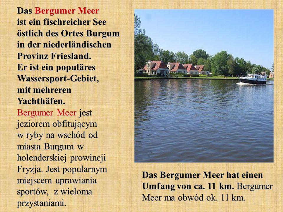 Das Bergumer Meer ist ein fischreicher See östlich des Ortes Burgum in der niederländischen Provinz Friesland. Er ist ein populäres Wassersport-Gebiet, mit mehreren Yachthäfen. Bergumer Meer jest jeziorem obfitującym w ryby na wschód od miasta Burgum w holenderskiej prowincji Fryzja. Jest popularnym miejscem uprawiania sportów, z wieloma przystaniami.
