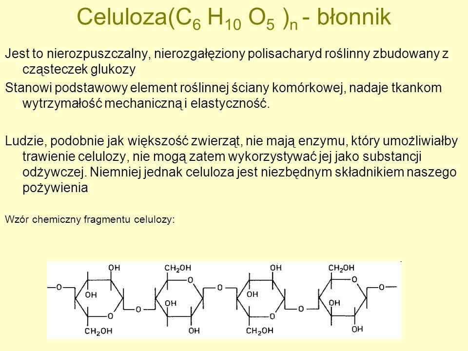 Celuloza(C6 H10 O5 )n - błonnik