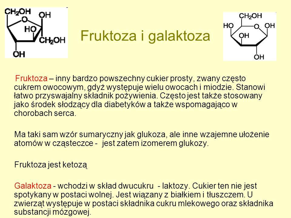 Fruktoza i galaktoza