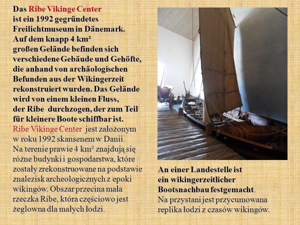 Das Ribe Vikinge Center ist ein 1992 gegründetes Freilichtmuseum in Dänemark. Auf dem knapp 4 km² großen Gelände befinden sich verschiedene Gebäude und Gehöfte, die anhand von archäologischen Befunden aus der Wikingerzeit rekonstruiert wurden. Das Gelände wird von einem kleinen Fluss, der Ribe durchzogen, der zum Teil für kleinere Boote schiffbar ist. Ribe Vikinge Center jest założonym w roku 1992 skansenem w Danii. Na terenie prawie 4 km² znajdują się różne budynki i gospodarstwa, które zostały zrekonstruowane na podstawie znalezisk archeologicznych z epoki wikingów. Obszar przecina mała rzeczka Ribe, która częściowo jest żeglowna dla małych łodzi.