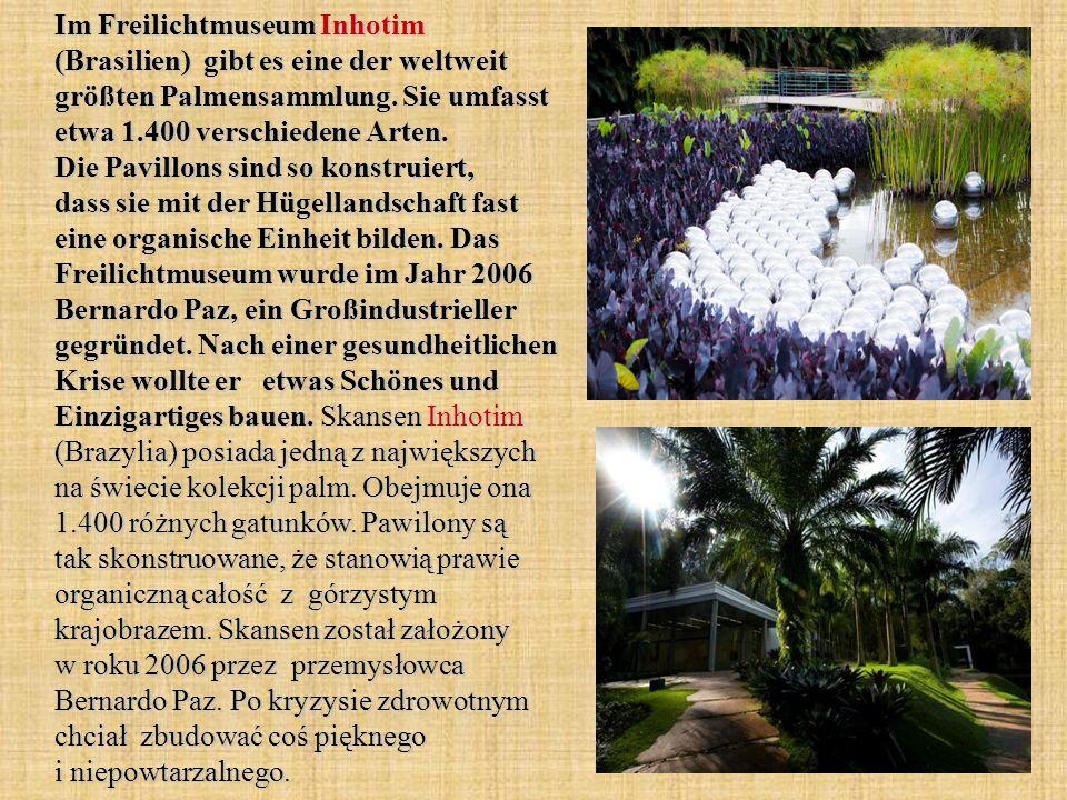 Im Freilichtmuseum Inhotim (Brasilien) gibt es eine der weltweit größten Palmensammlung.