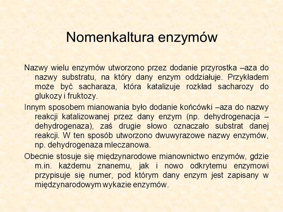 Nomenkaltura enzymów