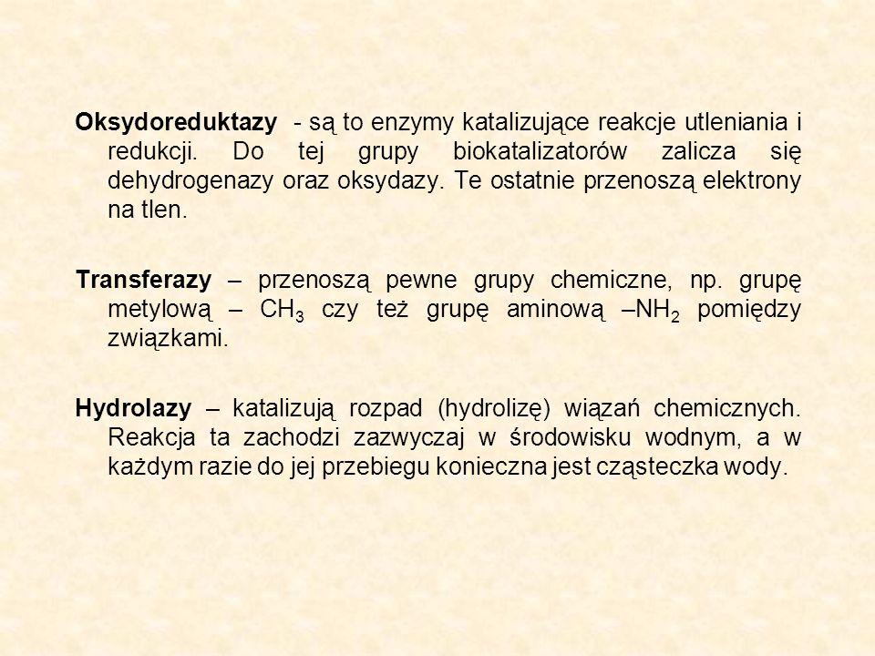 Oksydoreduktazy - są to enzymy katalizujące reakcje utleniania i redukcji. Do tej grupy biokatalizatorów zalicza się dehydrogenazy oraz oksydazy. Te ostatnie przenoszą elektrony na tlen.
