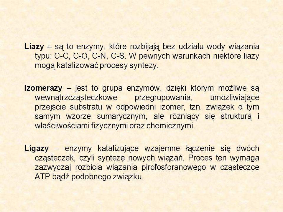 Liazy – są to enzymy, które rozbijają bez udziału wody wiązania typu: C-C, C-O, C-N, C-S. W pewnych warunkach niektóre liazy mogą katalizować procesy syntezy.