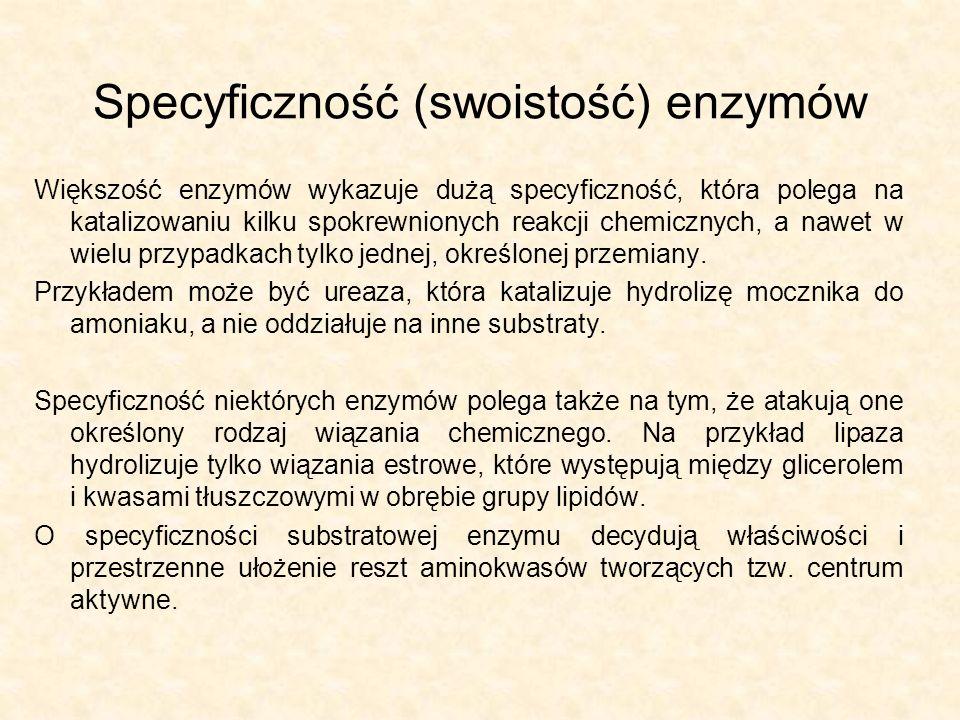 Specyficzność (swoistość) enzymów