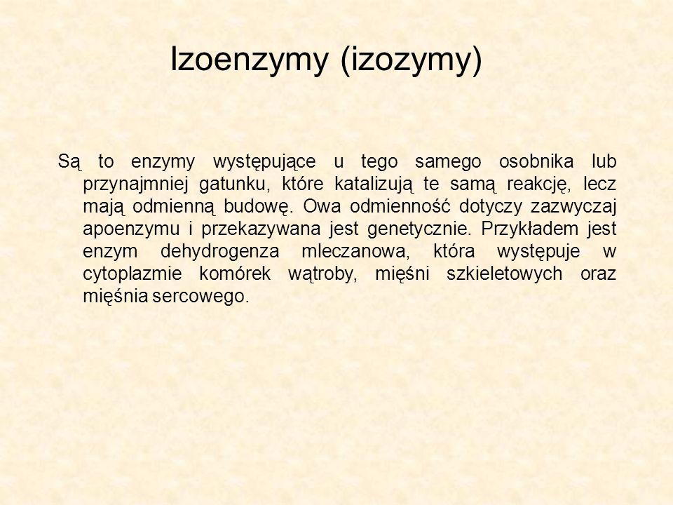 Izoenzymy (izozymy)