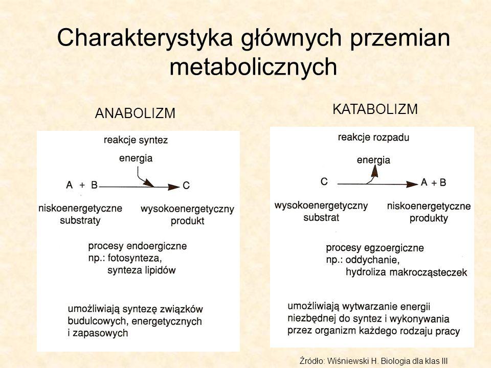 Charakterystyka głównych przemian metabolicznych