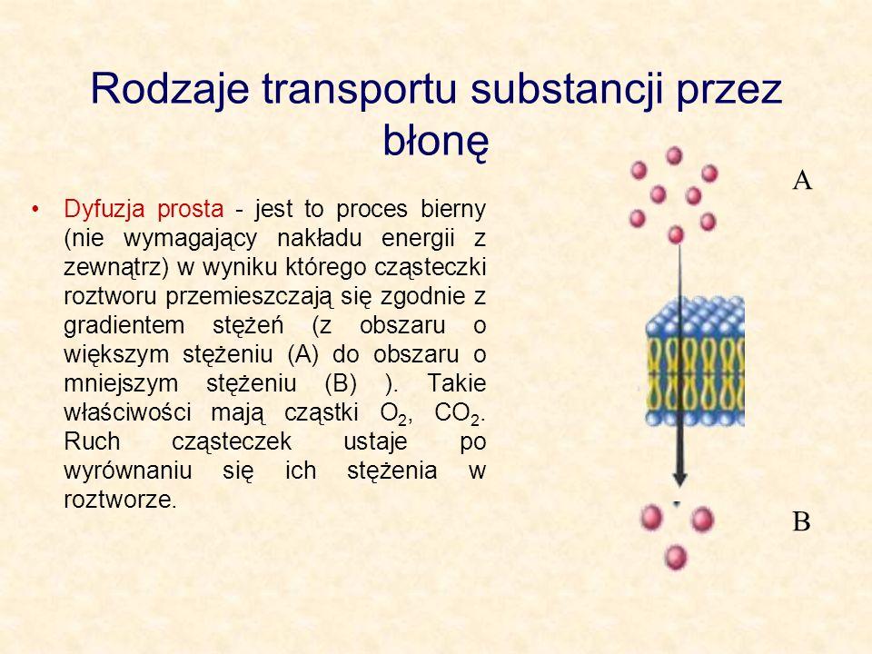 Rodzaje transportu substancji przez błonę