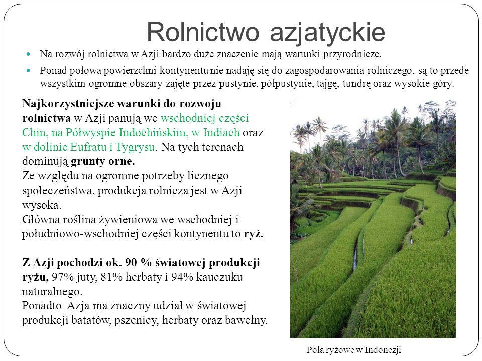 Rolnictwo azjatyckie Na rozwój rolnictwa w Azji bardzo duże znaczenie mają warunki przyrodnicze.