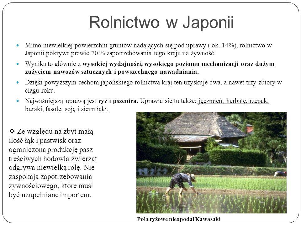 Rolnictwo w Japonii