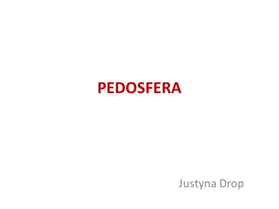 PEDOSFERA Justyna Drop