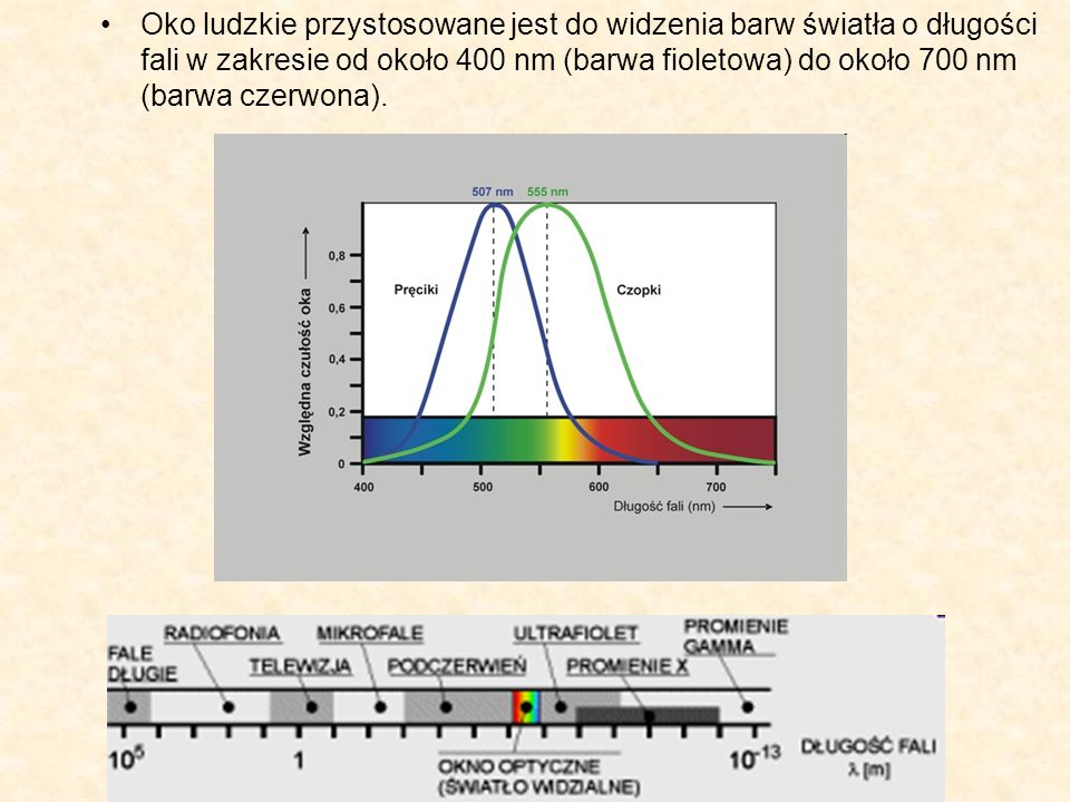 Oko ludzkie przystosowane jest do widzenia barw światła o długości fali w zakresie od około 400 nm (barwa fioletowa) do około 700 nm (barwa czerwona).