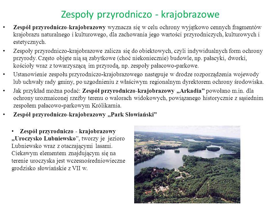 Zespoły przyrodniczo - krajobrazowe