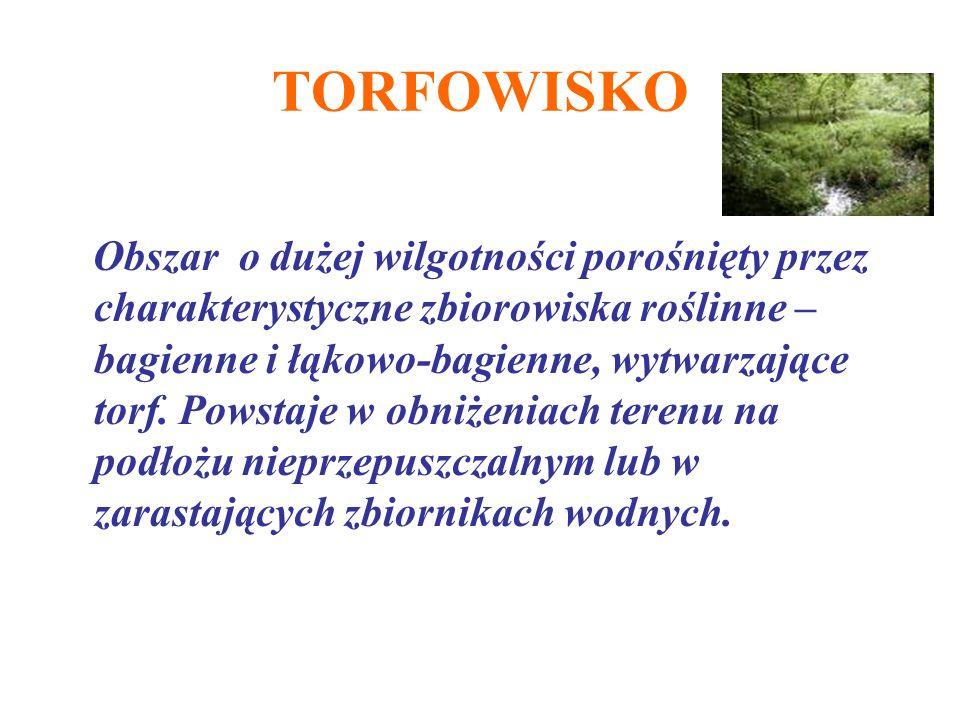 TORFOWISKO