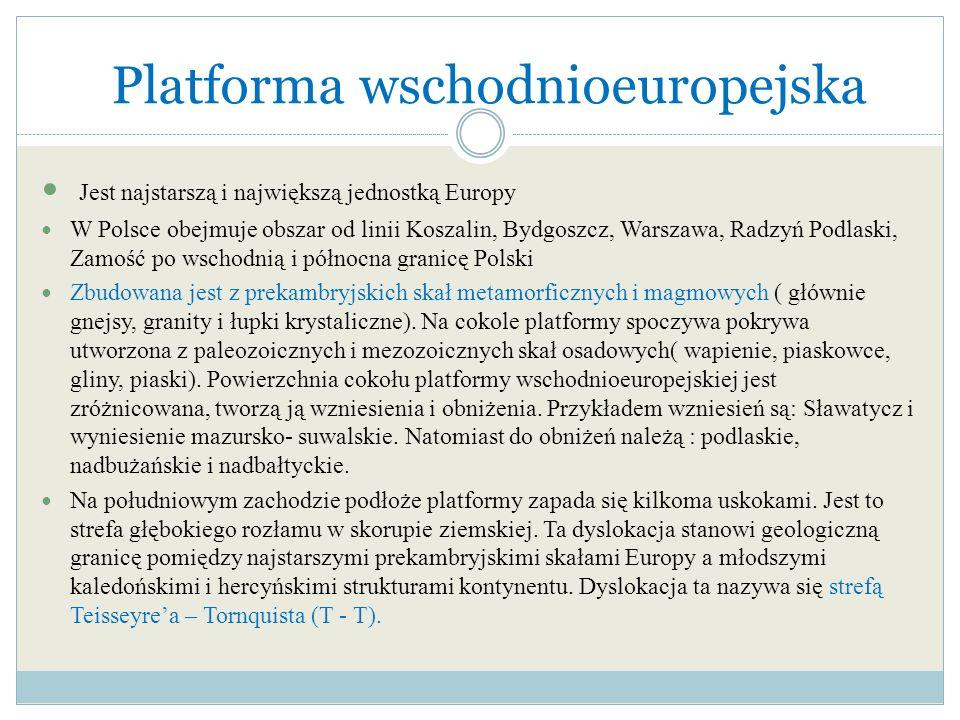 Platforma wschodnioeuropejska